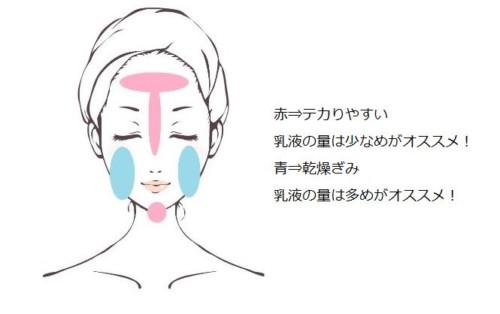 顔の皮脂分泌量の画像